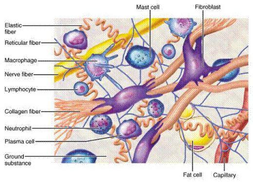 Bác sĩ chia sẻ về nguyên tắc trị sẹo lõm, sẹo rỗ 3